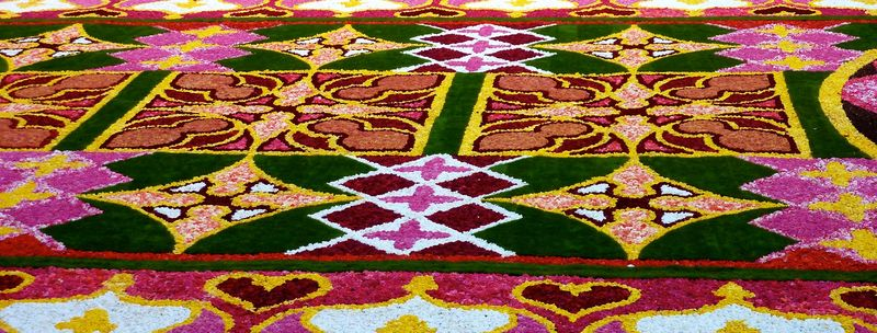 Flower carpet 62