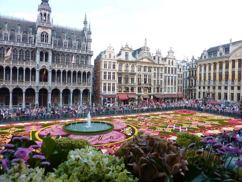 2010 Tapis De Fleurs Flower Carpet Of Brussels Ma Vie Trouvee