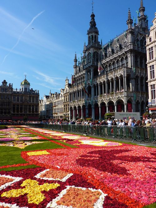Flower carpet 44