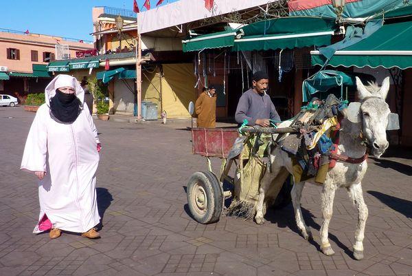 Marrakesh for the blog 13