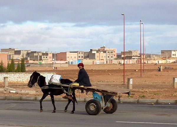 Marrakesh for the blog 81