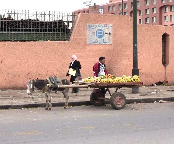 Cart (1)