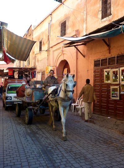Marrakesh for the blog 1