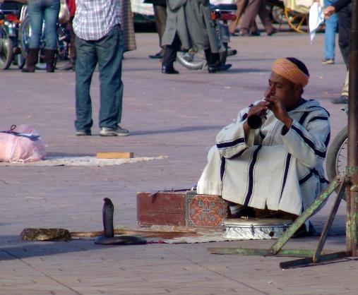 Marrakesh for the blog 17
