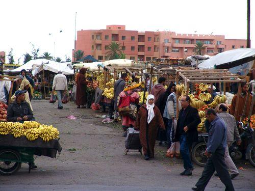 Marrakesh for the blog 43