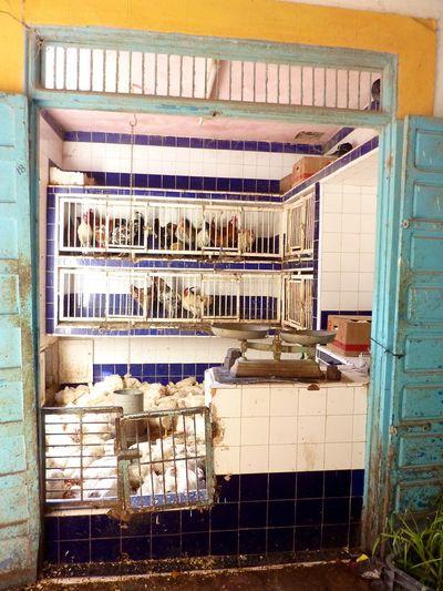 Marrakesh for the blog 133