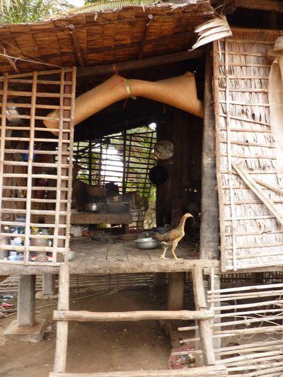 Sojourn village 29