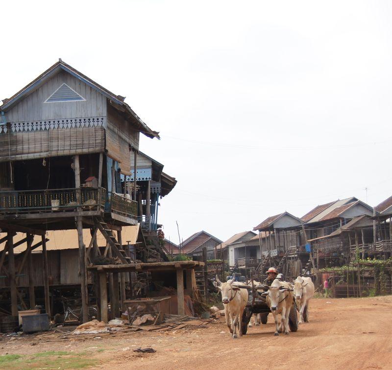 Stilted village for album