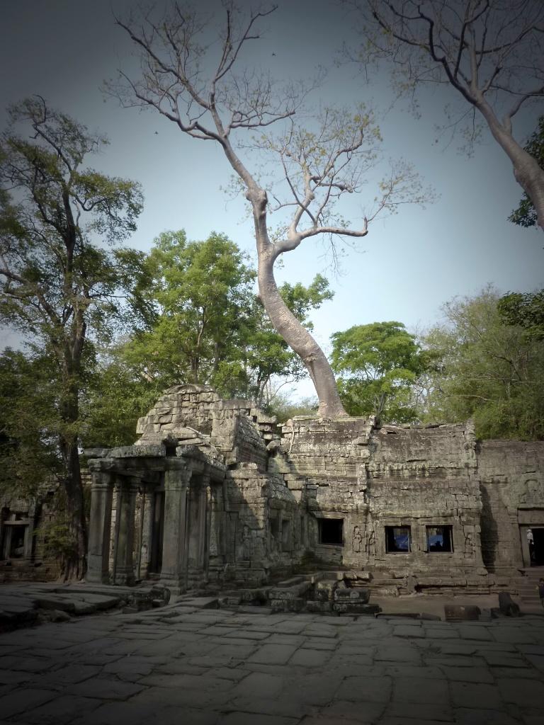 Temples of cambodia 10