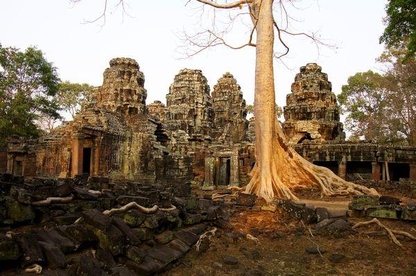 Temples of cambodia 49