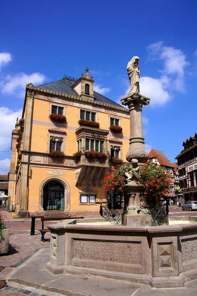 Alsace blog 25