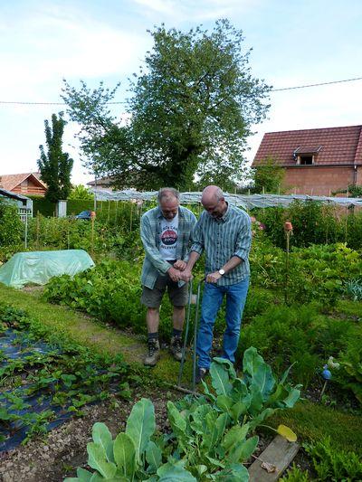 Alsace blog 8
