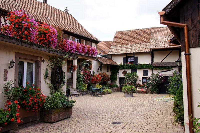 Alsace blog 40