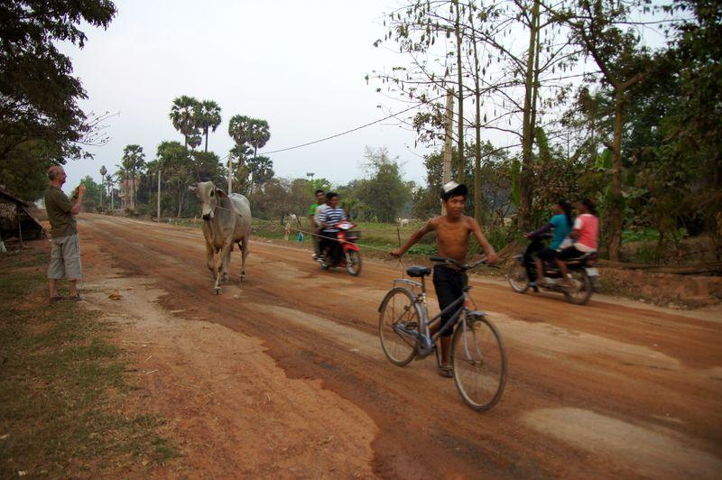 Sojourn village 55