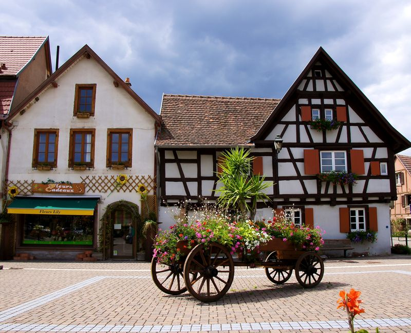 Alsace blog 15