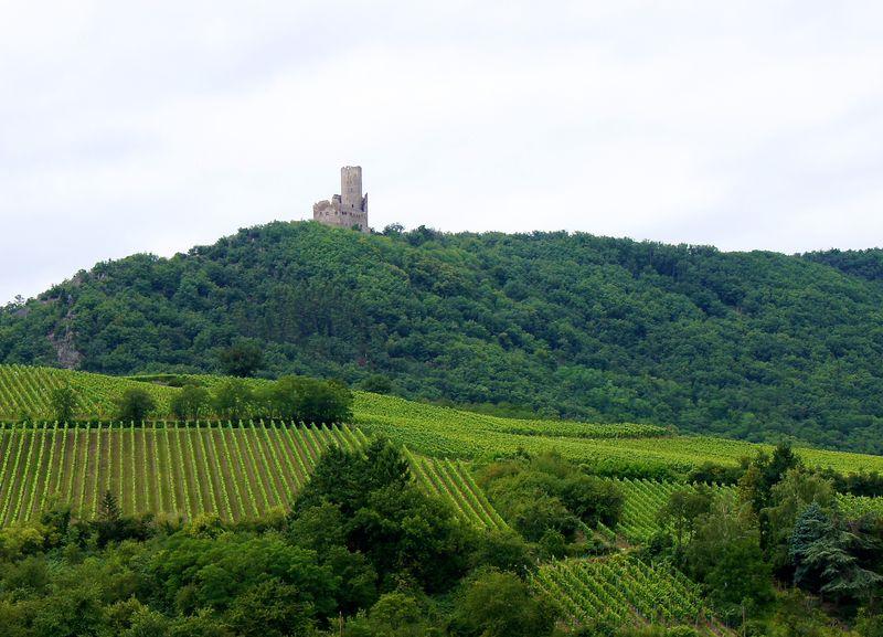 Alsace blog 47