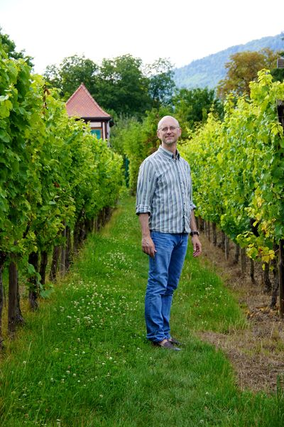 Alsace blog 45