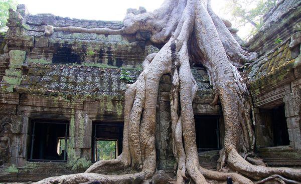 Temples of cambodia 6