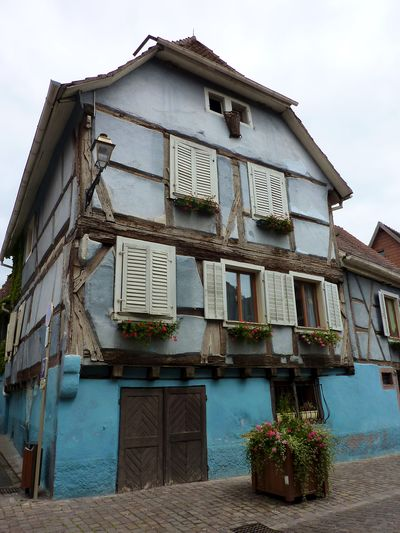 Alsace blog 18