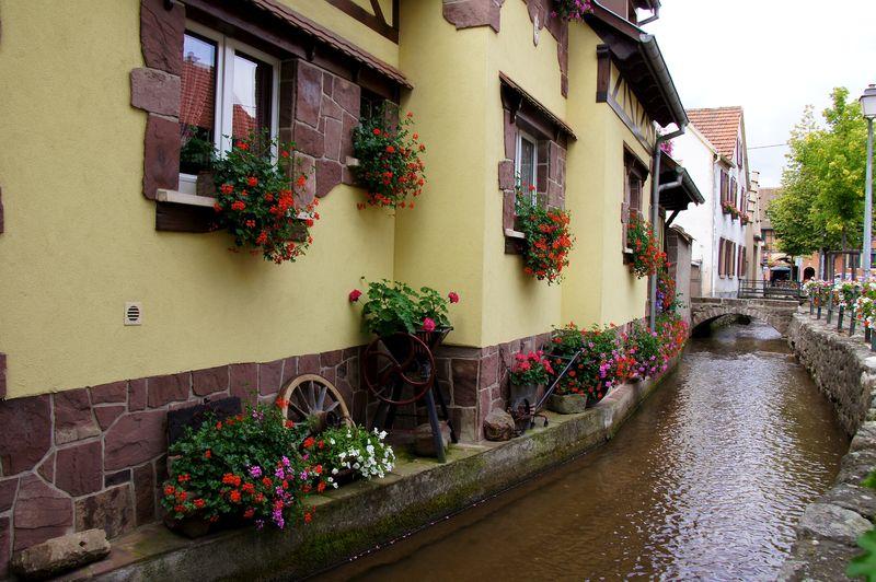 Alsace blog 28