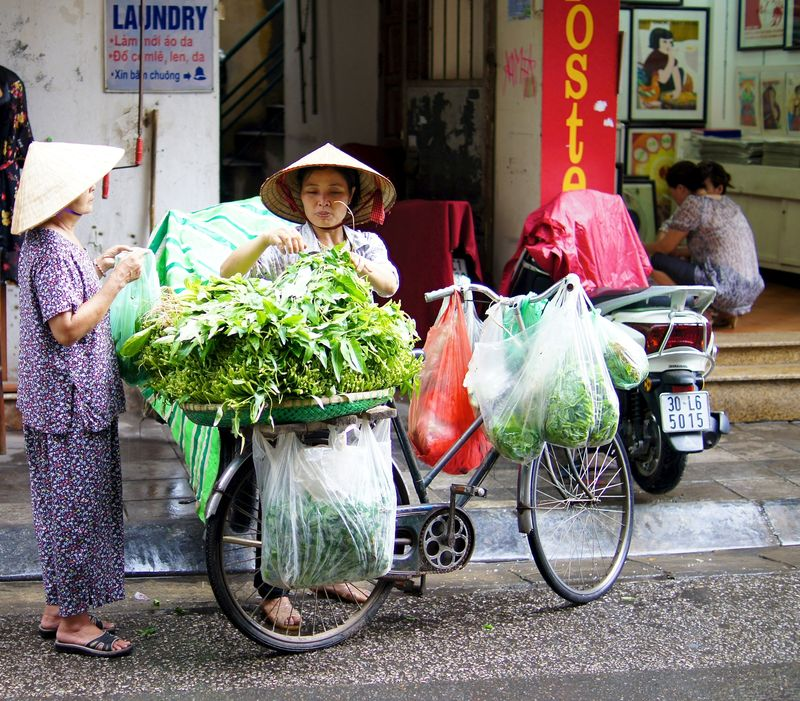 Hanoi 22