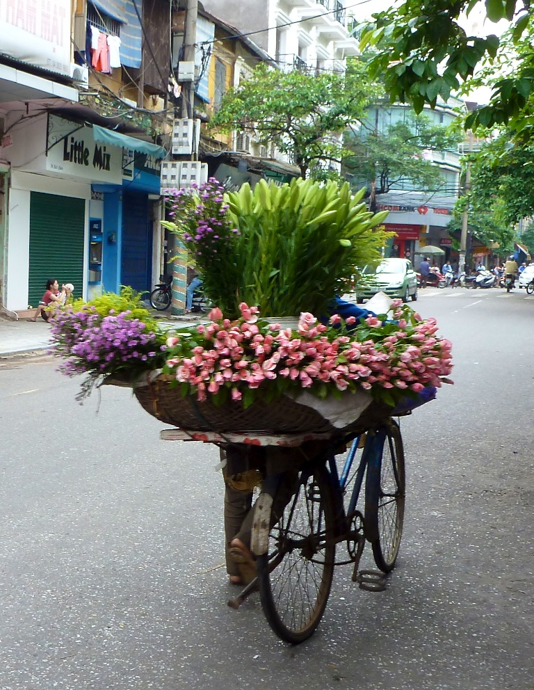 Hanoi 100
