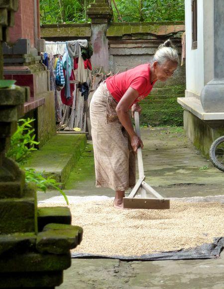 Bali blog 42