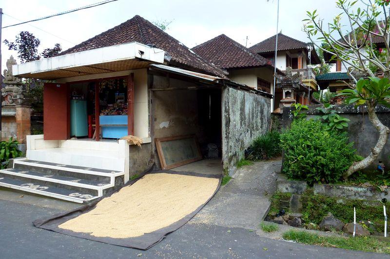 Bali blog 1