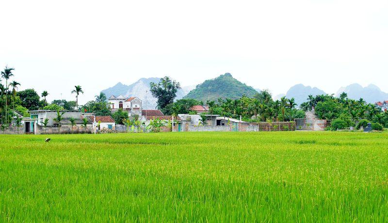 Hanoi 102