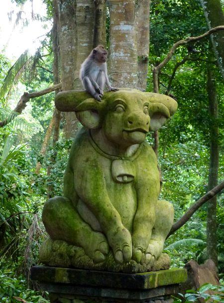 Bali blog 66