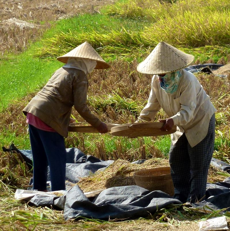Bali blog 36