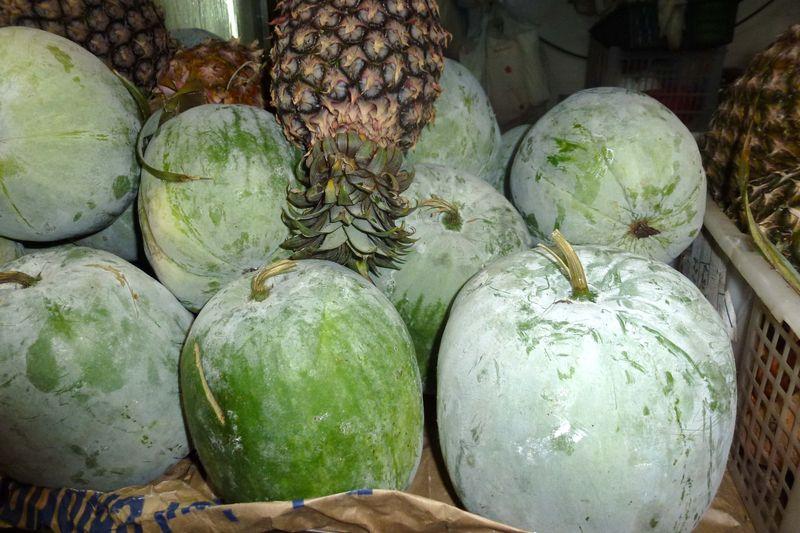 Winter melon2