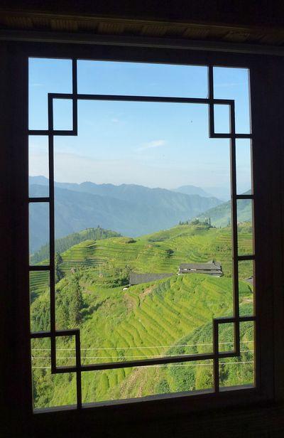 Rice fields china 65