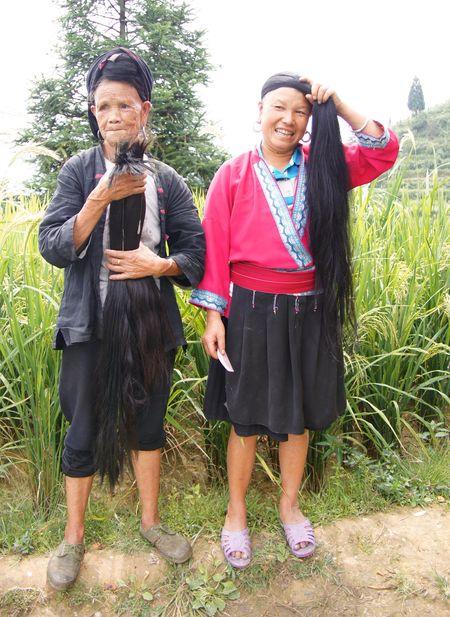 Rice fields china 24