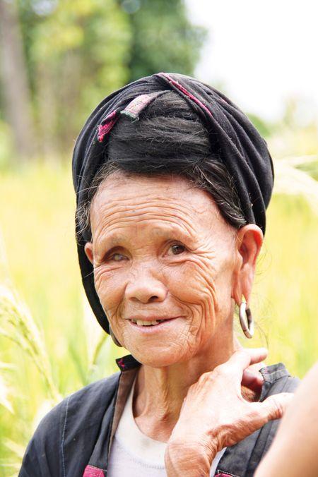 Rice fields china 29