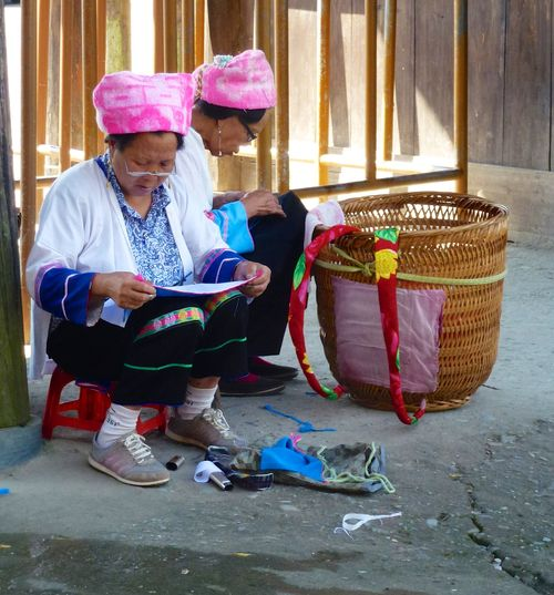 Rice fields china 66