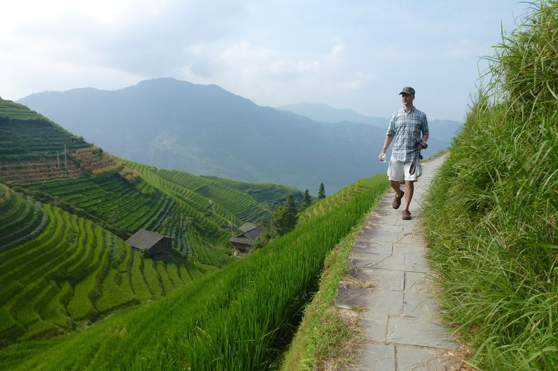 Rice fields china 41