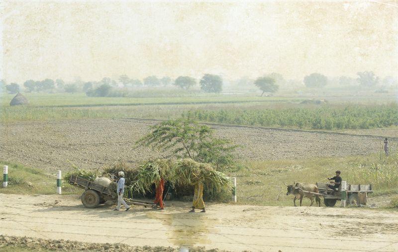 India 23