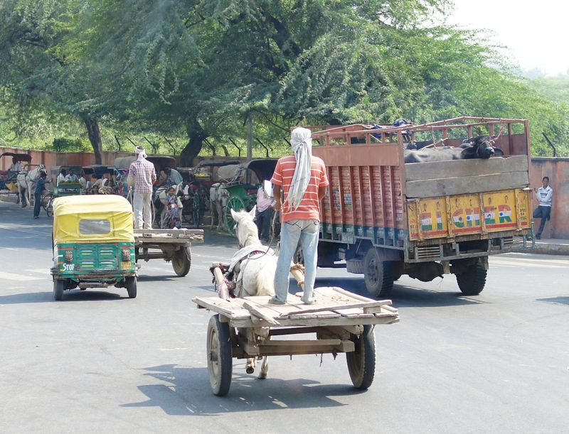 New delhi india 3 58