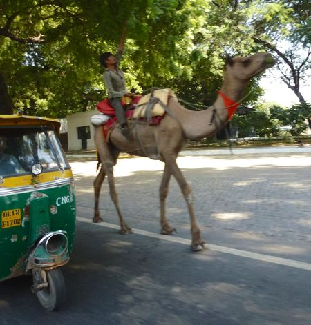 New delhi india 3 24