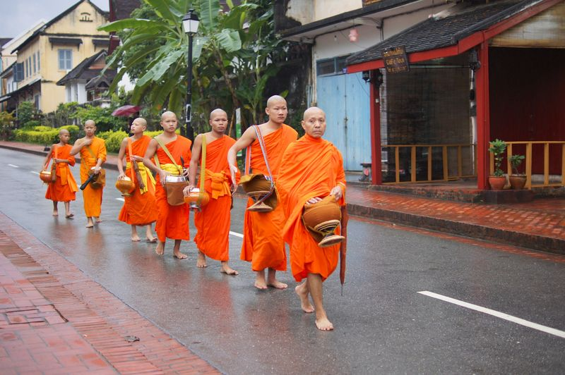 Monk procession 3