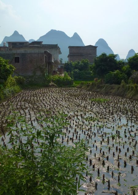 Yangshuo china 8