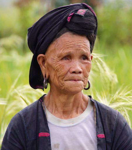 Rice fields china 21
