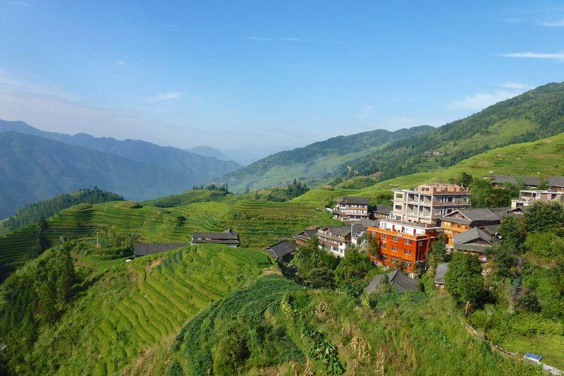 Rice fields china 64