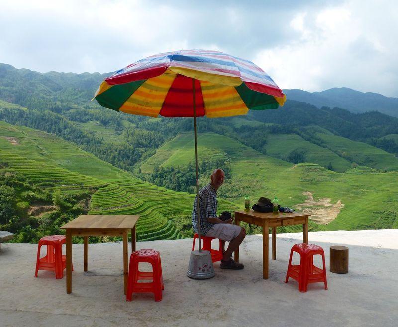 Rice fields china 46