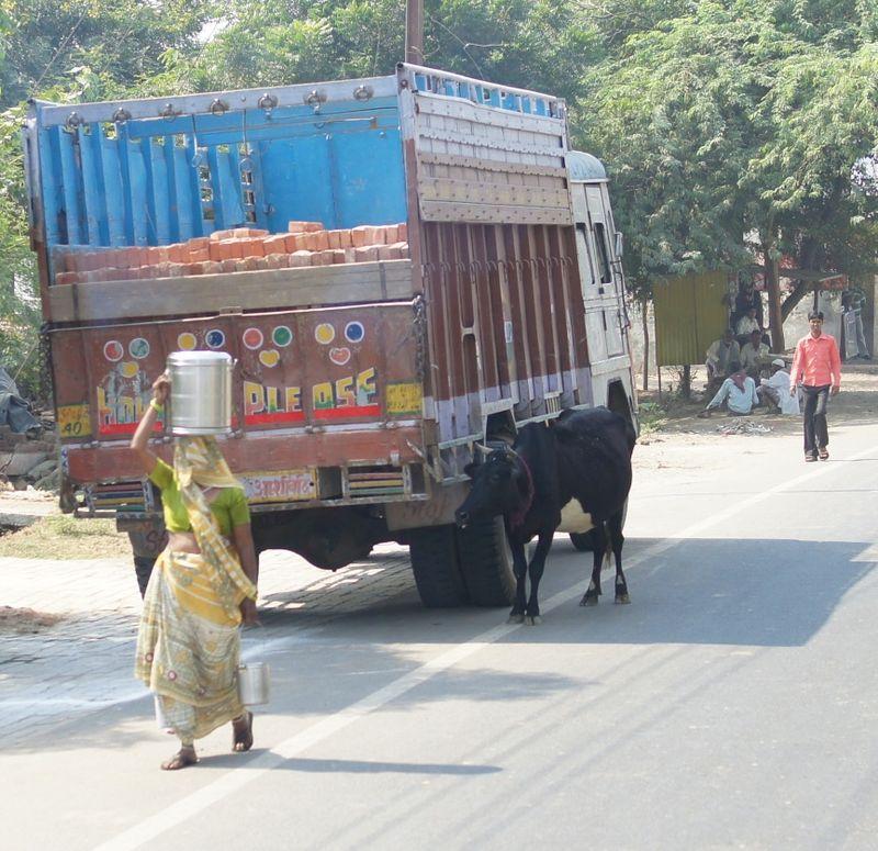 New delhi india 3 51