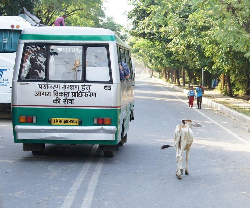 New delhi india 3 59