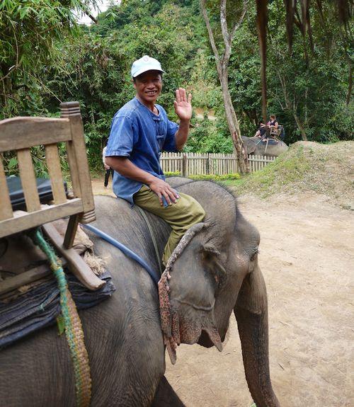 ELEPHANT RIDE 6