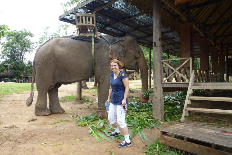 ELEPHANT RIDE 16
