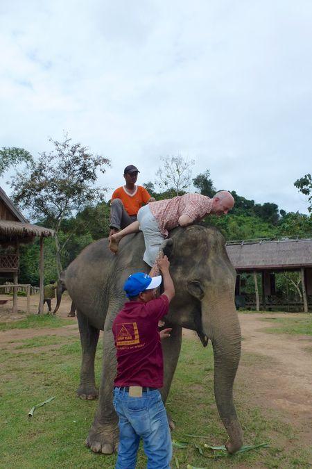 ELEPHANT RIDE 24